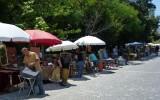 Pchli tagr w dzielnicy Monastiraki