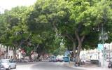 Ulica Malagi