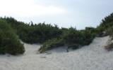 Plaża w Calasetta