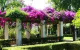 Ogród Pałacu Hiszpańskiego