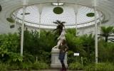 Glasgow Ogród Botaniczny