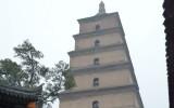 Wielka Pagoda Dzikich Gęsi